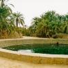 egypt2003-siwa-cleopatra-pool