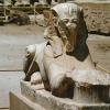 egypt_karnak_tutanchamun-sphinx