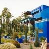 morocco-marrakesh-majorelle-garden2