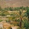morocco-way-to-zagora2