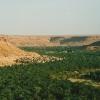 morocco-ziz-valley-oasis