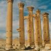 syria-palmyra3